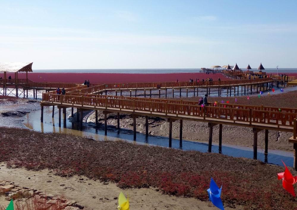 云游四海(670)红海滩国家风景廊道