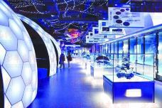 青岛滨海学院世界动物自然生态博物馆-青岛-_CFT01****3774009